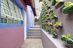 vertical-garden-bottles-sao-paulo-1
