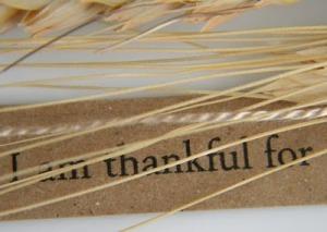 Thanksgiving 3_thumb[3]